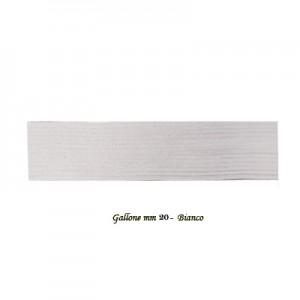 Elastico Gallone Treccia n.28 mm20 - rotolo 10 mt